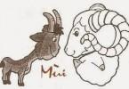 Tử vi trọn đời tuổi Đinh Mùi - Nữ Mạng