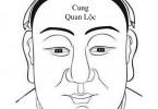 Xem tướng cung Quan Lộc trong 12 cung tướng mặt