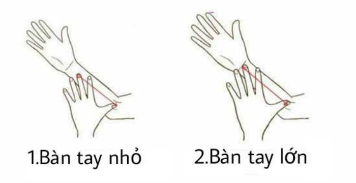 kich co ban tay va tinh cach cua ban Kích cỡ bàn tay và tính cách của bạn có liên quan như thế nào?