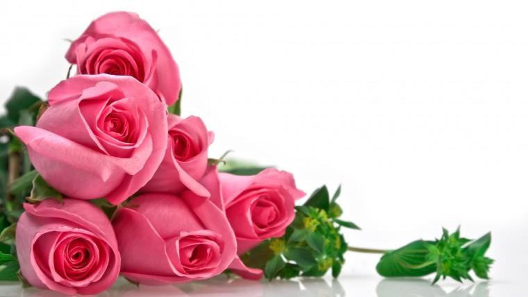 1 760x428 Lựa chọn hoa sinh nhật phù hợp để tặng 12 cung hoàng đạo