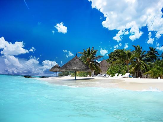giấc mơ thấy đại dương