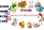 tu-vi-12-con-giap-tuan-tu-11-12-den-17-12-2017