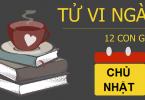 tu-vi-chu-nhat-ngay-17-12-2017-cua-12-con-giap
